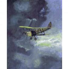 Tiger Moth de Havilland