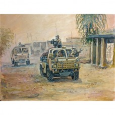 Jackal Helmand