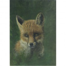 Fox in a wood