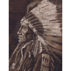 Sioux North American Indian